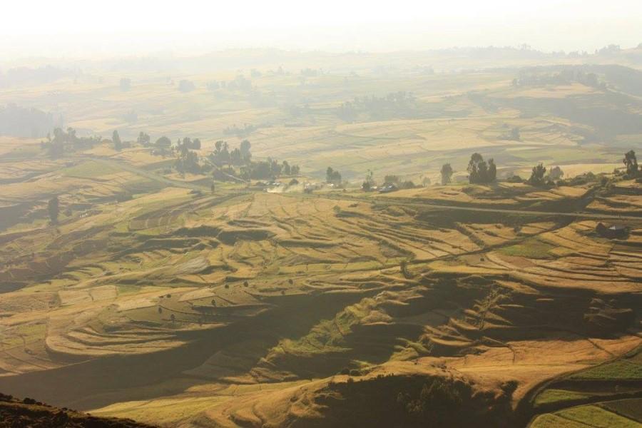 Ethiopia2 - 900