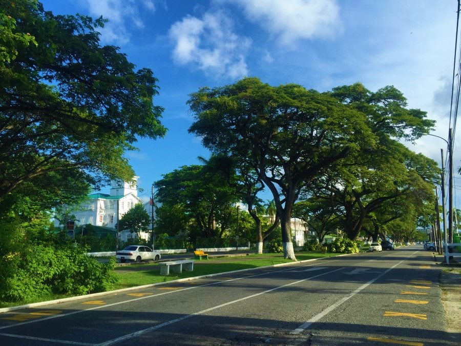 Georgetown, Guyana tree-lined street from Meleah Paull