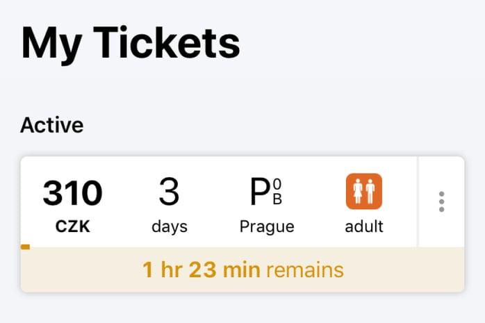 Mobile App Prague