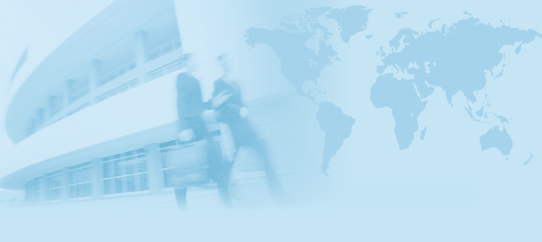 Borderless Pay Insights: Changing Executive Compensation for the 21st Century