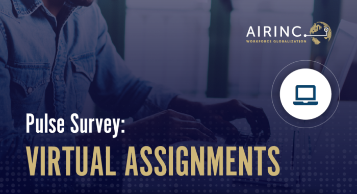 Virtual Assignments: Pulse Survey Results [Download]